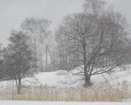 Snow_blizzard-188x150